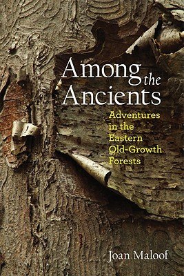 Among the Ancients By Maloof, Joan